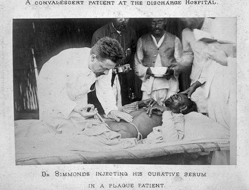 Patkányok által terjesztett súlyos betegségek – A pestis